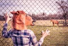 Syndrom mrtvého koně