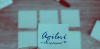 agilni management